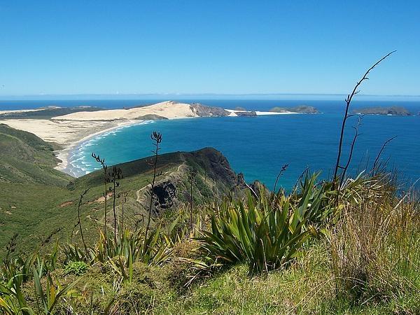 Cape Reinga #New Zealand