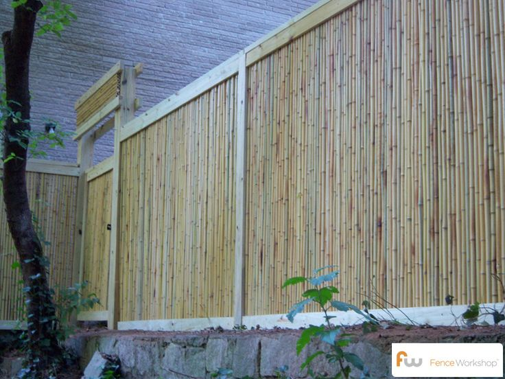 17 best ideas about cheap privacy fence on pinterest for Cheap patio privacy ideas