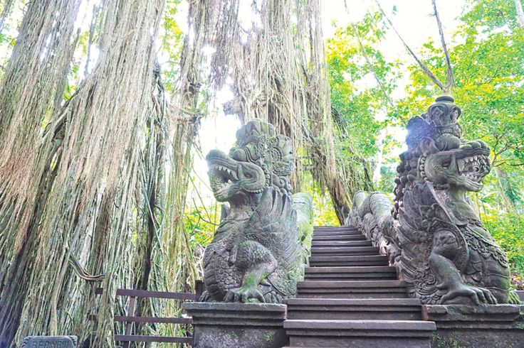 """""""A popular tourist destination in Ubud visited by thousands of travelers every year, Ubud Monkey Forest is a natural reserve and Hindu temple complex worth checking out."""""""