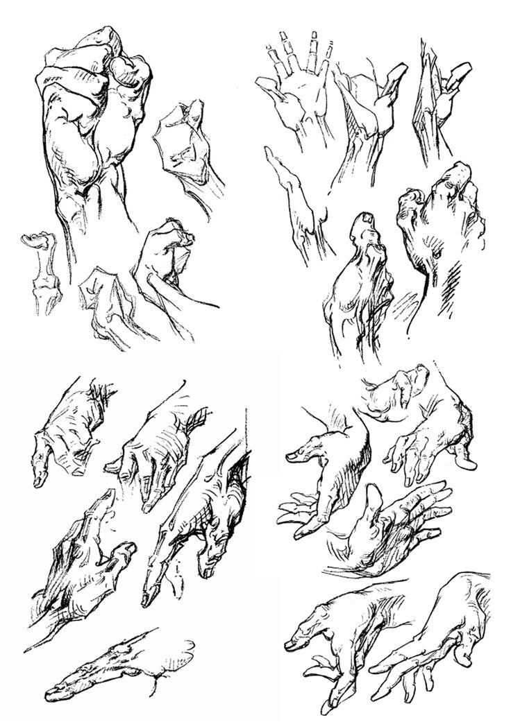 Artistic Anatomy : Photo-Bridgman hands