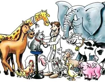 26 de abril Día Internacional de la Medicina Veterinaria
