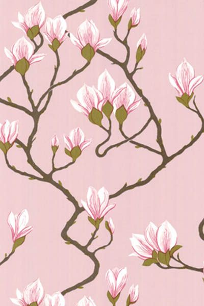 Cole and Son Magnolia Wallpaper.  I'm in love with this wallpaper.