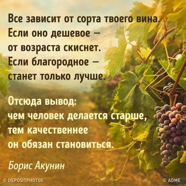 Борис Акунин                            adme