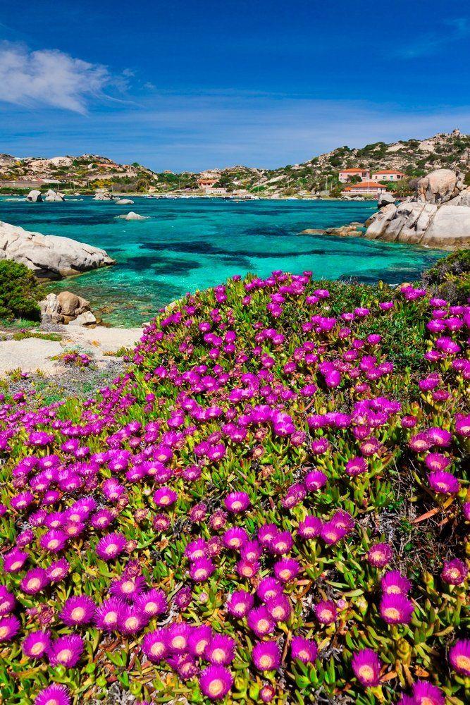 La Maddalena, Parco Nazionale Arcipelago di la Maddalena, Sardinia, Italy by Corbis