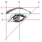 For those of you over plucking and waxing this is how you map out your eyebrow