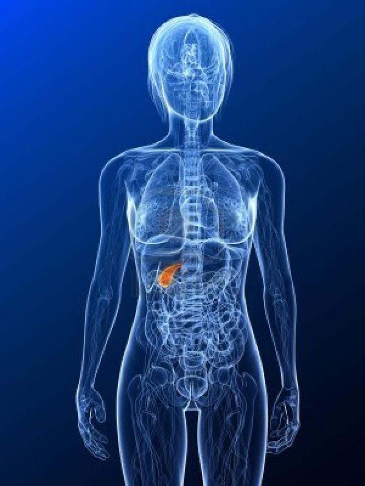 La terapia oral con estrógeno, asociada con mayor riesgo de cirugía de vesícula biliar en mujeres menopáusicas