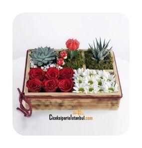 Ahşap bölmeli kaide içinde papatyalar, 6 adet kırmızı güller ve 3 adet teraryum sukulent kaktüs bitkileri ile hazırlanan aranjman konsepti.