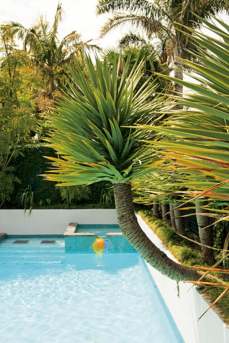 perimeter overflow pool designs | What is a Perimeter-Overflow Swimming Pool  Design?