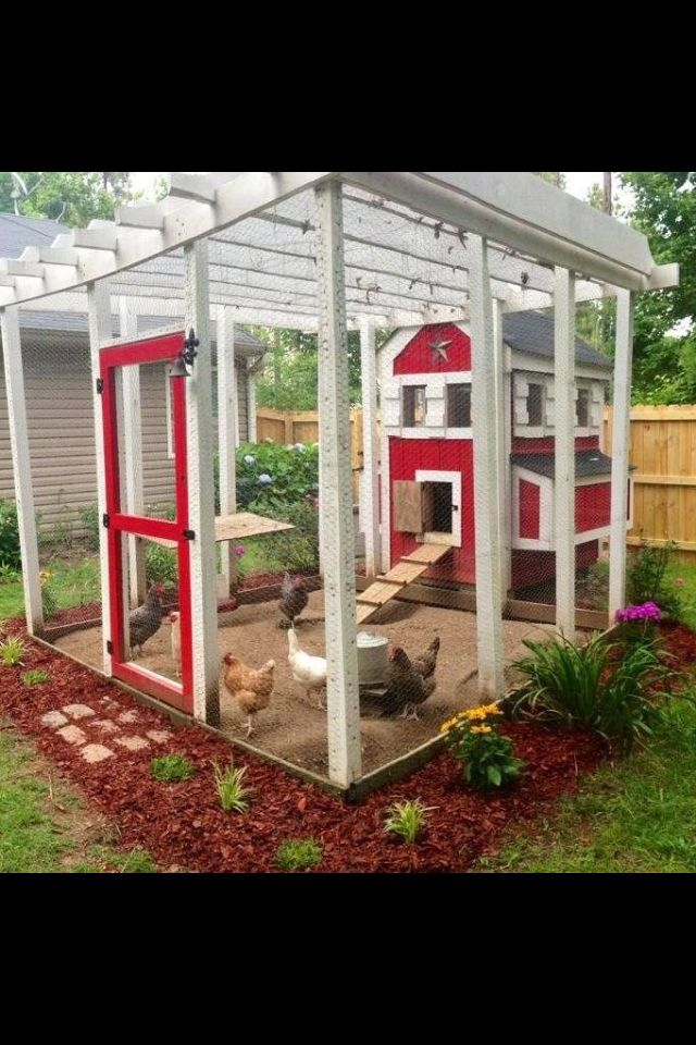 I just love this Chicken pen !! This is the one I want my hubby to build me !!