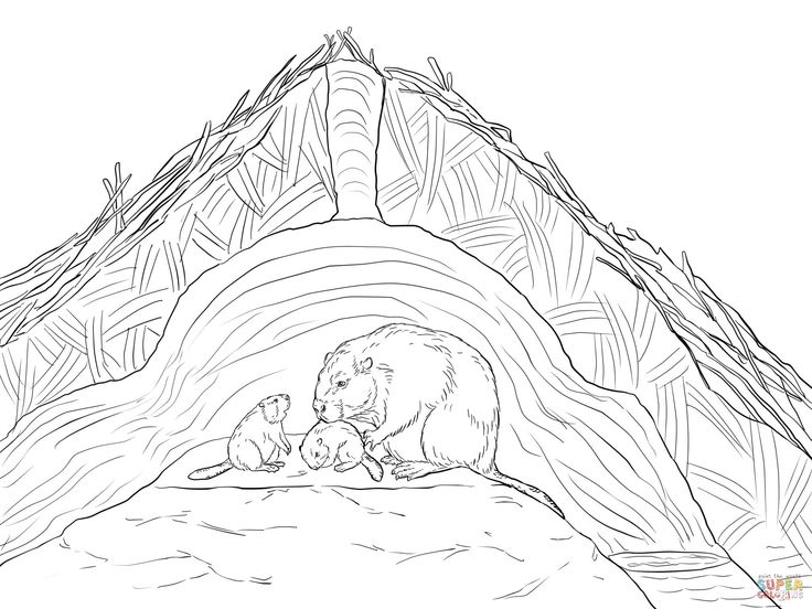 beaver lodge coloring page - Google Search
