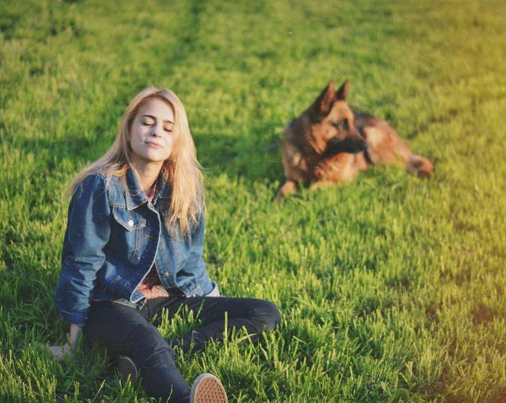 Dog, summer, German shepherd
