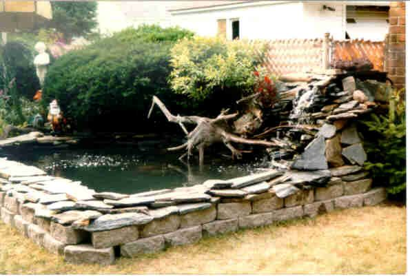 1000 Images About Water Features Ponds On Pinterest