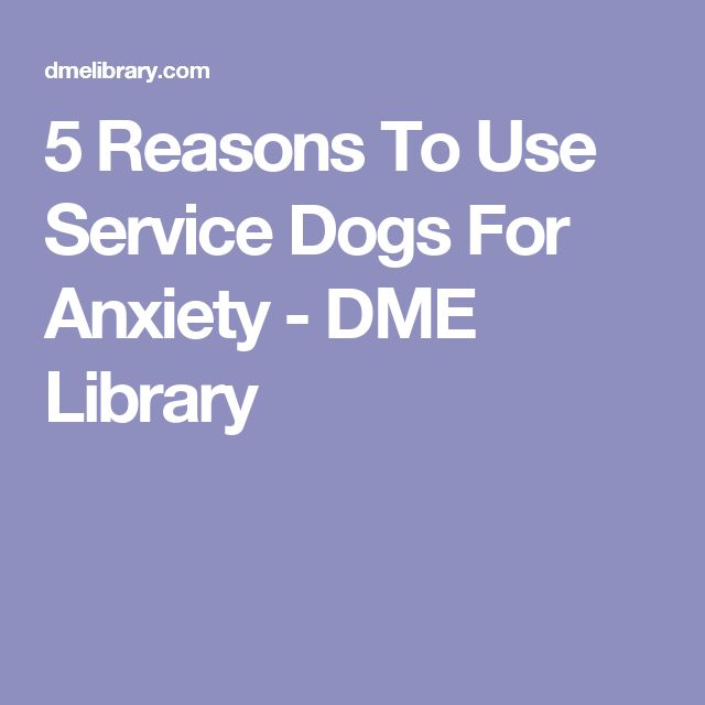 the reasons why dogs should be certified as service and therapy animals An emotional support dog is not required to perform any specific tasks for a  disability like service dogs are they are meant solely for emotional stability and.
