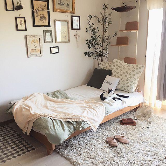 女性で、1Rの北欧/北欧家具/フレーム/ねこのいる風景/雑貨/1R…などについてのインテリア実例を紹介。「本当に買ってよかったソファベッド◎ こうやって写真で見ると完全にベッドですね◎ でもソファです( ´⚰︎` ) 本当に寝心地が良い! ベッドにするのが簡単! セミダブルのボックスシーツがすっぽり入ります◎ ただ部屋が狭いのでベッドにしている間はキャットタワー使用禁止令が発令中( ´⚰︎` )」(この写真は 2017-08-12 17:51:16 に共有されました)