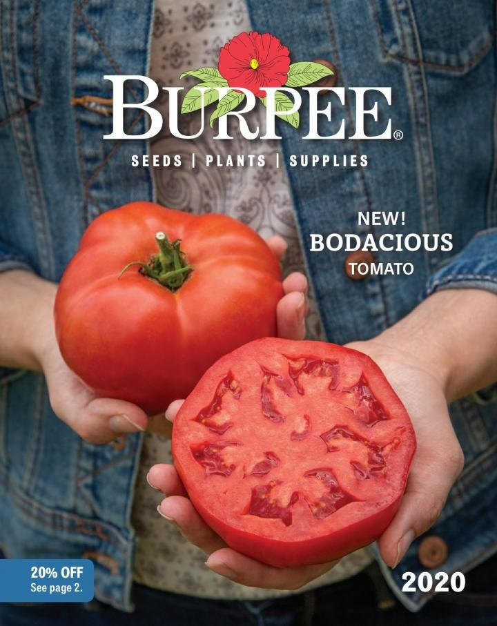 Free Garden Seed Catalogs And Online Plant Sources Burpee Seeds