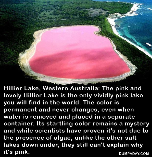 I would LOVE to visit this someday! Hillier Lake, Western Australia.