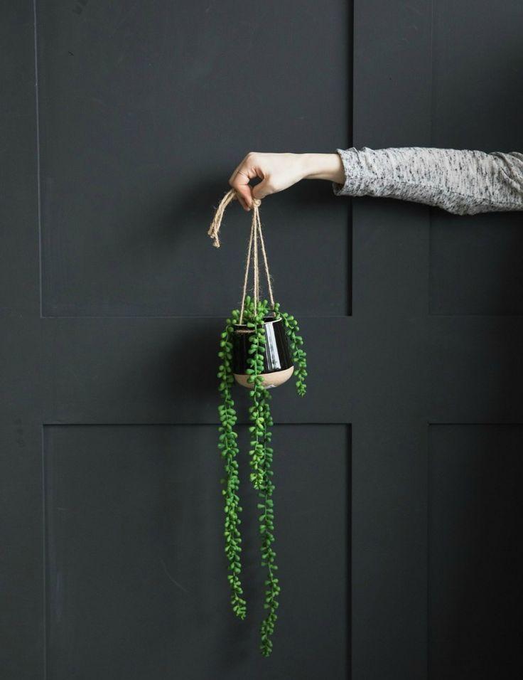 Hanging Plant Pot at Rose & Grey