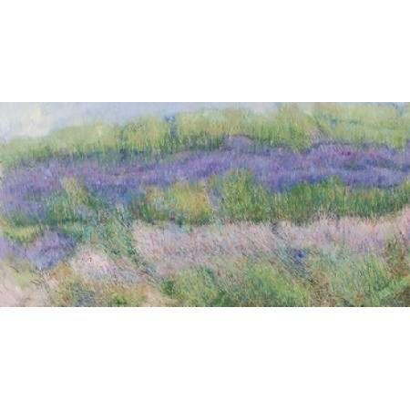Campi di lavanda I Canvas Art - Murenoir (10 x 20)