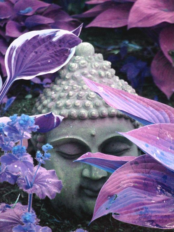 Buddha with purple lavender leaves   by Regina Alexandra