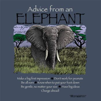 Advice from an elephant! | Advice From ... | Pinterest ...