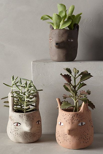 forest critter pots by Sarah Burwash