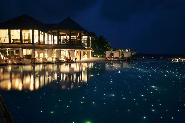 Any idea how those lights work? Underwater LEDs? Whatever it is, I like it!: Lights, Favorite Places, Maldives Resorts, Bodu Hithi, Coco Palms, Pools, Hotels, Boduhithi, Palms Bodu