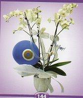 Seramik Vazoda 5 Dal Orkide