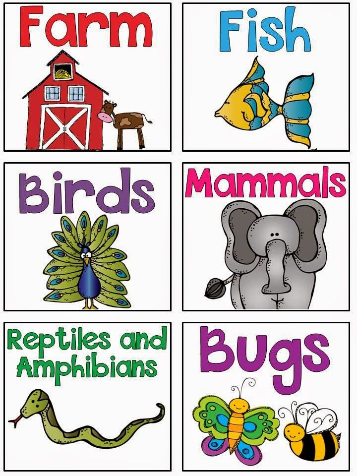 My Silly Firsties: Library Labels Freebie