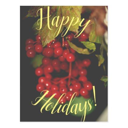 Red Berries Happy Holidays Postcard Card - holiday card diy personalize design template cyo cards idea