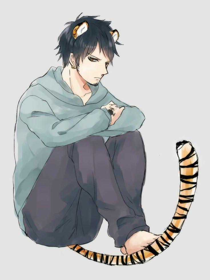 Tiger Law