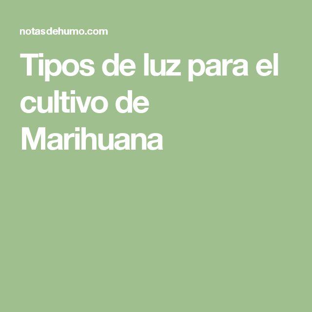 Tipos de luz para el cultivo de Marihuana