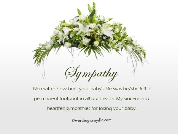 Share this on WhatsAppWords of Sympathy for loss of child: There are no words that can explain what the loss of a child means to [...]