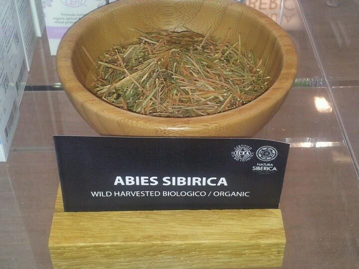 Abies Siberica.Wild Siberian herbst by Natura Siberica.