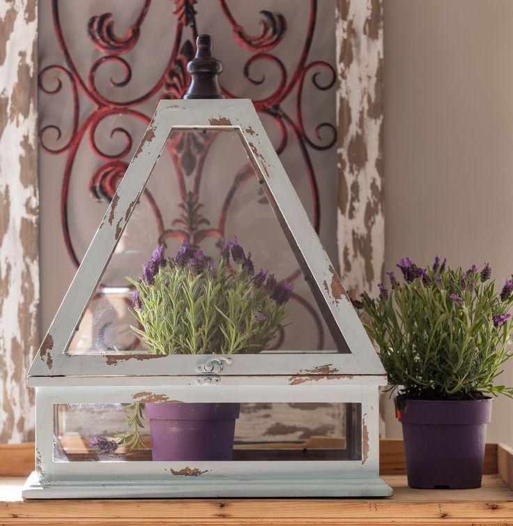 Haben Sie schon Frühjahrsdekorationen? Sehen Sie wie schön sind unsere Dekorationen. Heute präsentieren wir ein Gewäschshaus, das verschiedene Verwendung besitzt. Z, B, man kann dort Heilkräute oder Pflanzen geben außerhalb sieht schon aus. Wir geben Ihnen auch eine Idee dafür. #Frühjahrsdekorationen #Dekorationen #Heilkräute #Pflanzen # Gewäschshaus #Dekokäfig  #Idee