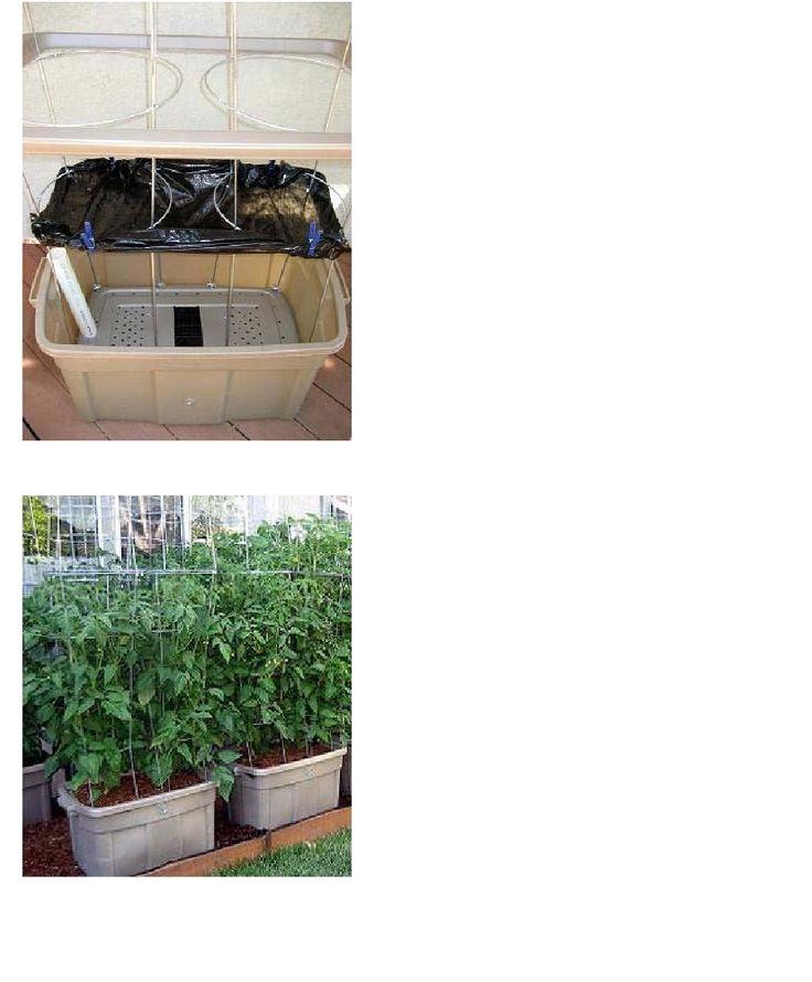 Diy self watering container garden green thumb wannabe pinterest - Diy self watering container garden ...
