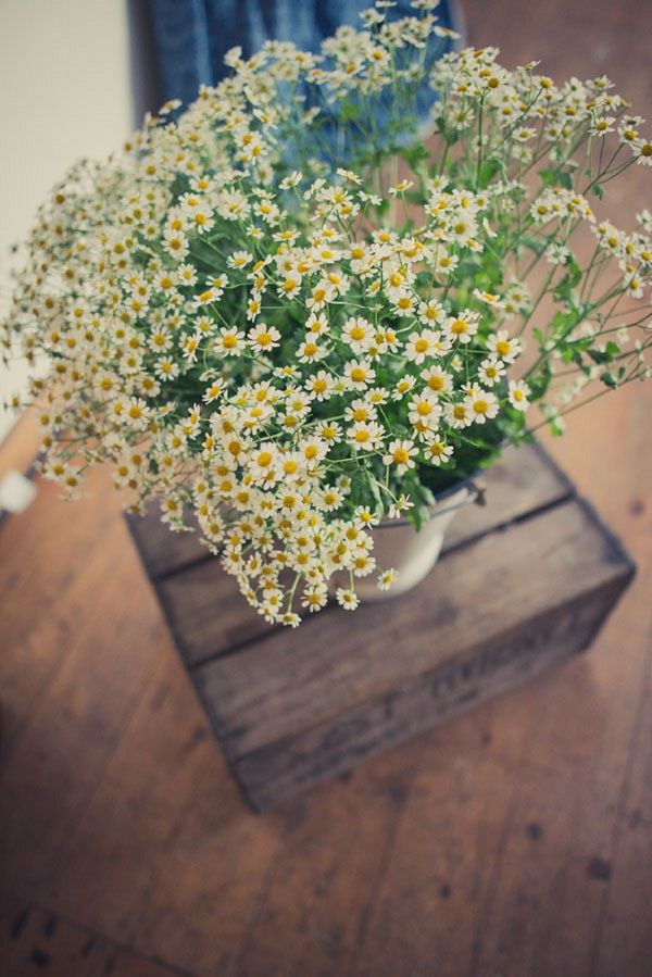 daisy wedding flowers, image by http://karibellamy.com/