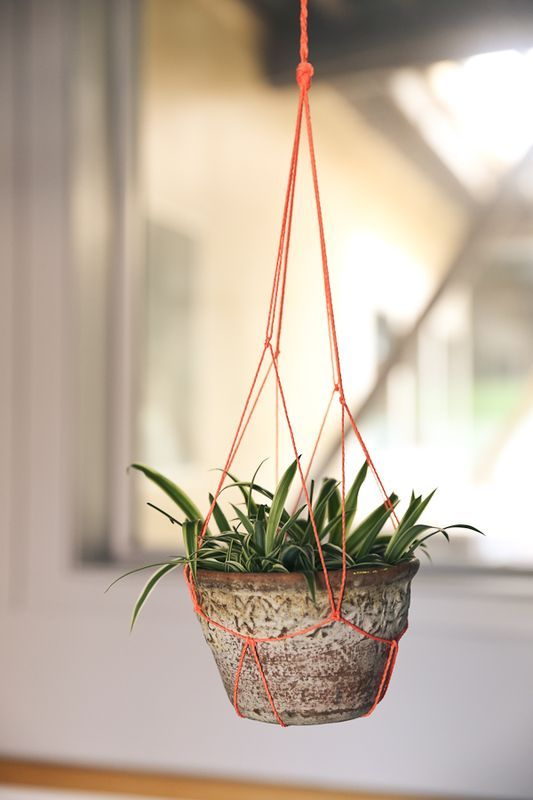diy macrame hanging planter 17 best images about plants diy plant hangers on 6727