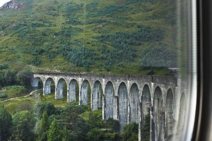 Ja, das ist, wo Harry Potter fiel aus der Weasleys fliegendes Auto.
