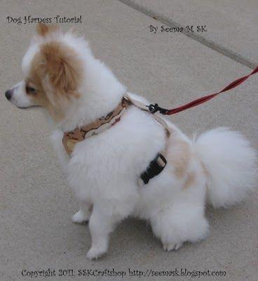 Dog Harness, tutorial