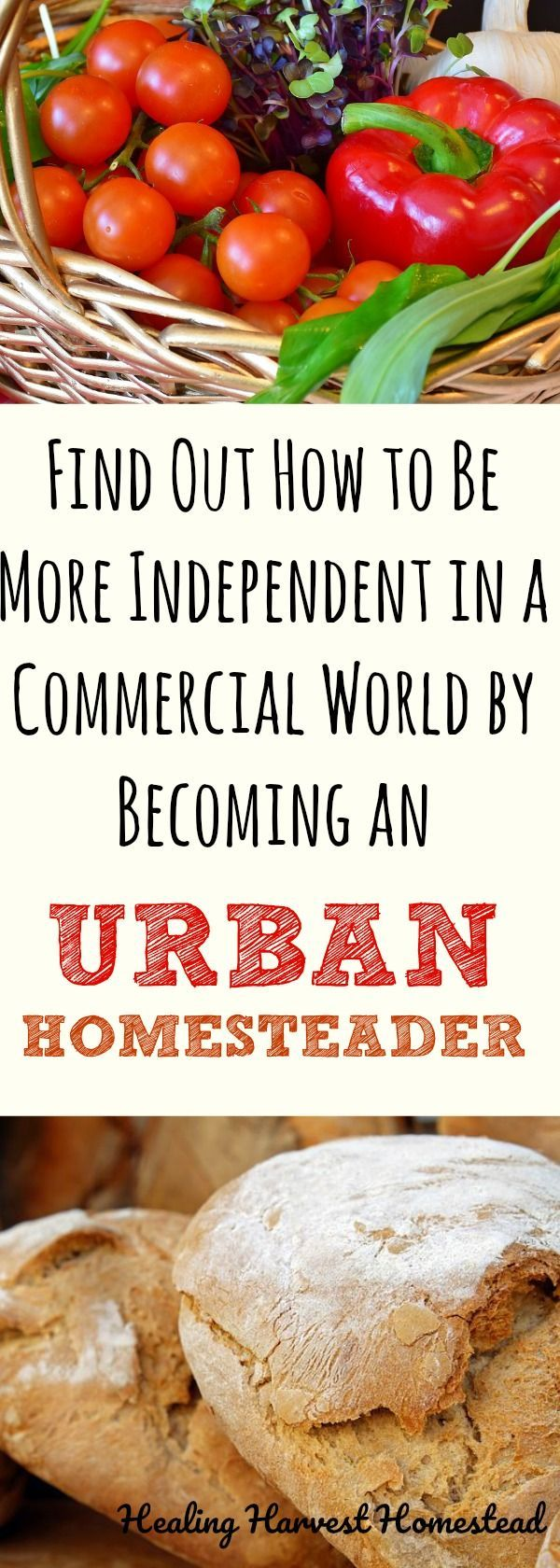 Urban Homesteading: Is it Really Possible? (My 5 Truths About Urban Homesteading)