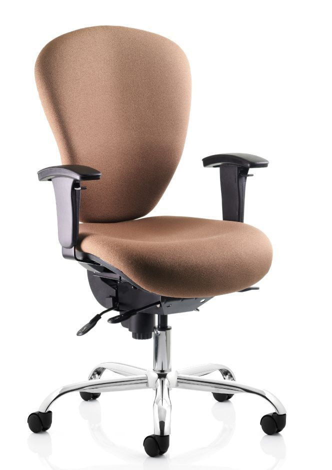 Marvelous Sphere Ergonomic 24 Hour Chair