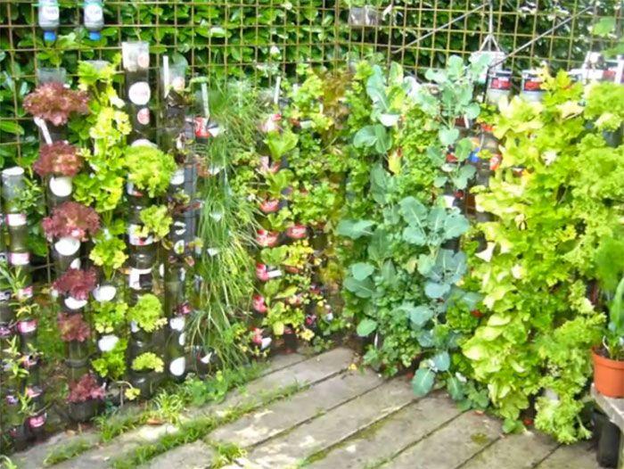 Mejores 569 im genes de vertical gardens en pinterest for Jardines verticales en balcones