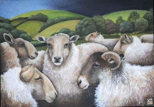 Sheep Moot - Jemima Jameson: gallery