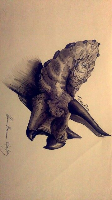 An old draw of triceratops, made whit copic