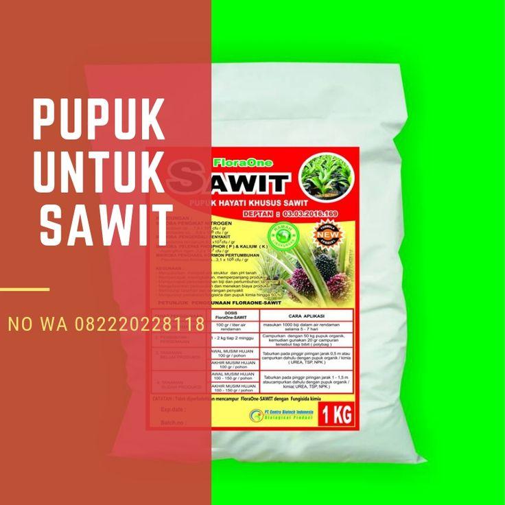 Pin Di Paling Dicari Wa 082220228118 Pupuk Sawit Yang Bagus Pupuk Untuk Sawit Buah Pasir Di Bali
