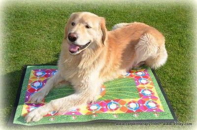 Carpettherapy methodology http://www.49lley.com/n/carpettherapy-methodology