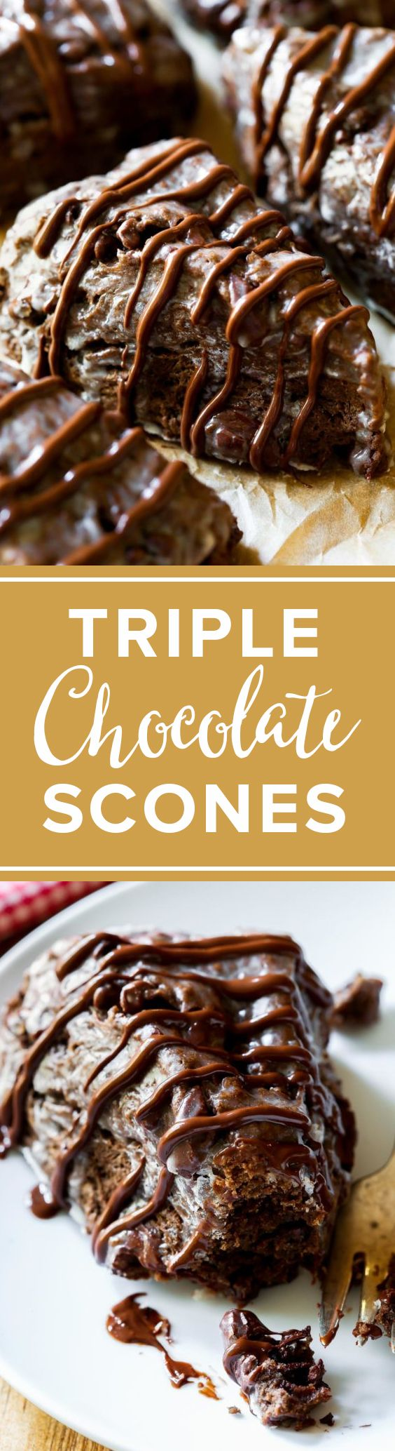 These crumbly, yet moist triple chocolate scones taste like warm brownies from the oven!!! Recipe http://sallysbakingaddiction.com/2014/11/10/triple-chocolate-scones-supreme/