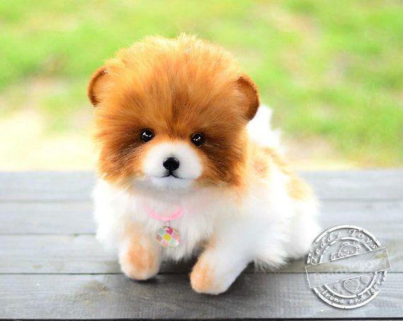 Pomeranians Handmade Toy Spitz Daisy Made To Order Teddy Dog Teddy