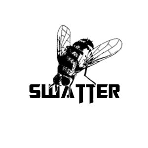 From my Portfolio: Flyswatter Logo