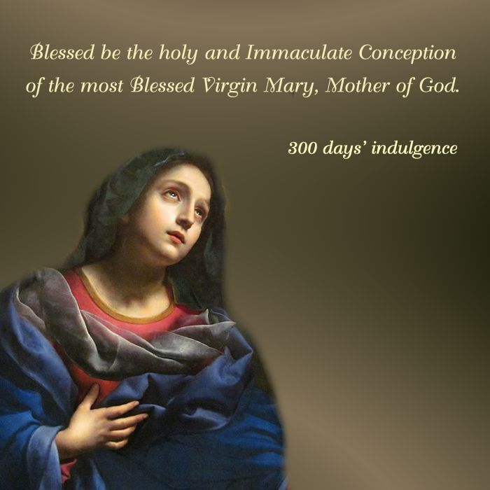 1000+ Ideas About Feast Of Immaculate Conception On